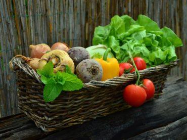 Dobre skrzynie na warzywa