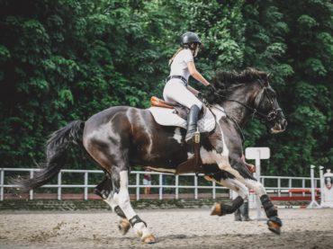Dobre spodnie do jazdy konnej
